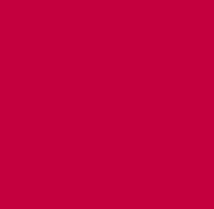 24 Stunden Hotline Icon 304x298 in rot | Kleintierpraxis Delmenhorst